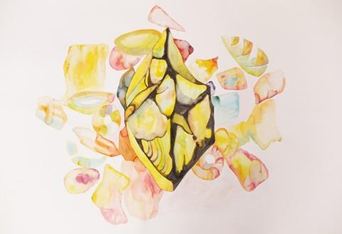 45_web-tuti-fruti