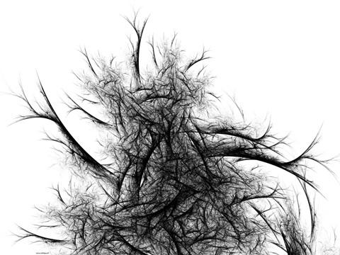 'Tree' Victor Carbajo