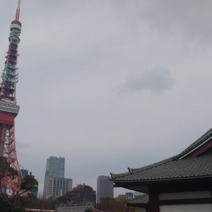 Japón, sol naciente de contrastes